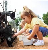 granjas para niños