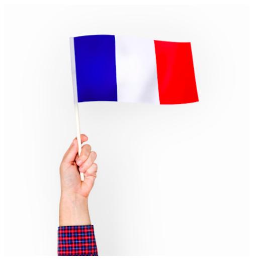 Curso básico de Francés con...