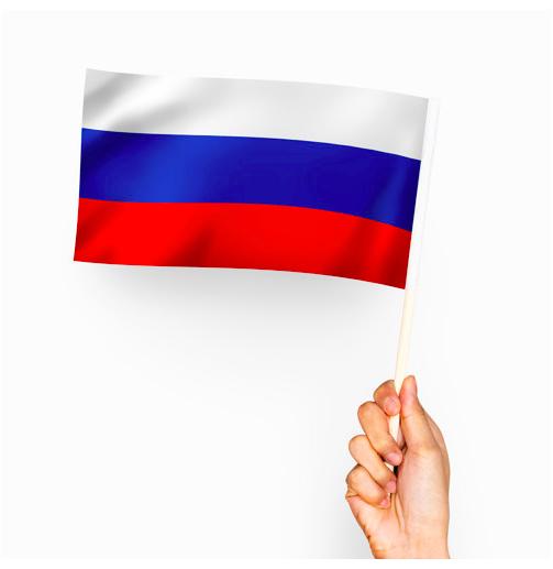 Curso básico de Ruso con...